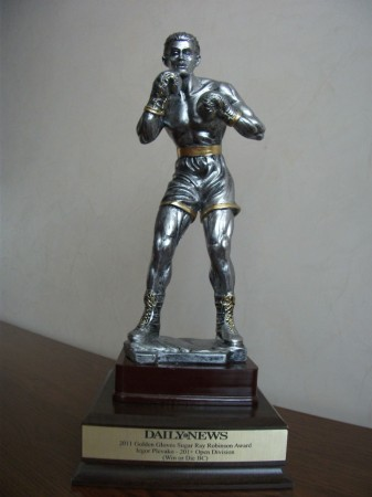Sugar Ray Robinson Award for most outstanding Golden Gloves open boxer